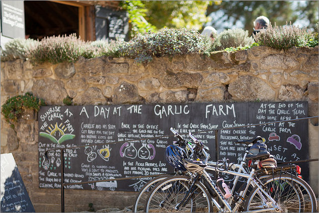 day at the garlic farm - visit isle of wight